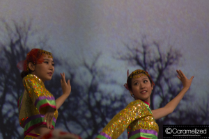 Night of Asia 2014 Chinese folk dance by Jacksonville Chinese Association